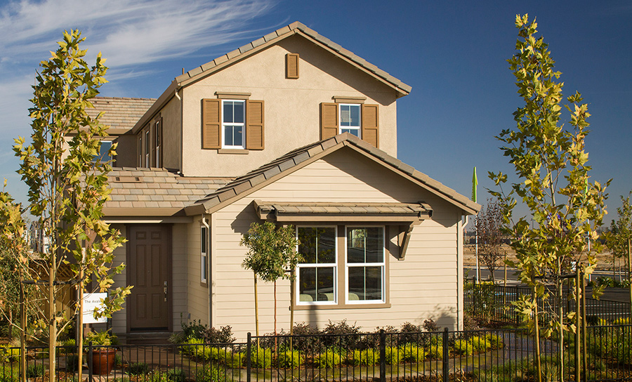 Happy Homeowners at Savannah in Mountain House