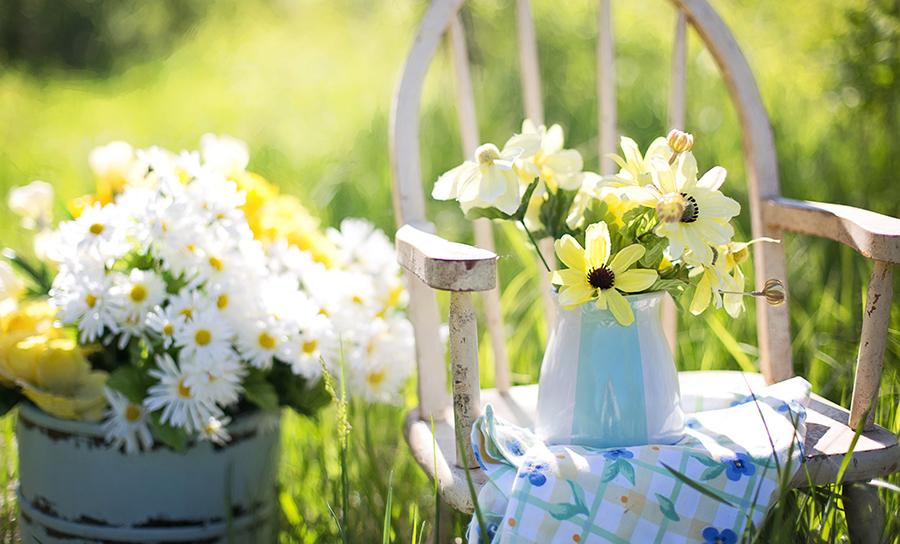 Arrange the Perfect Fresh Flower Bouquet