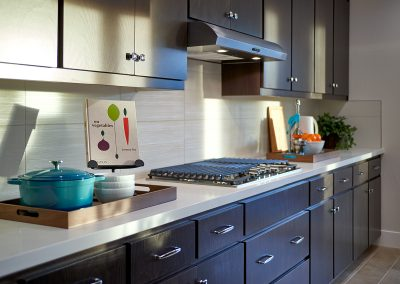 Kitchen_Detail_DSC5274