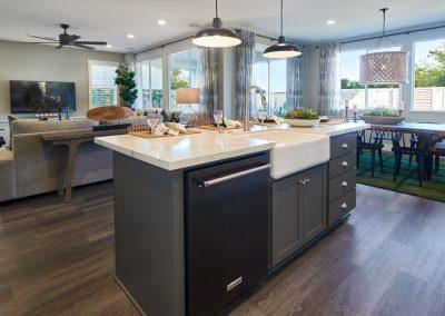Kitchen_DSC9571