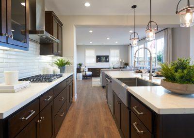 Kitchen_DSC9922