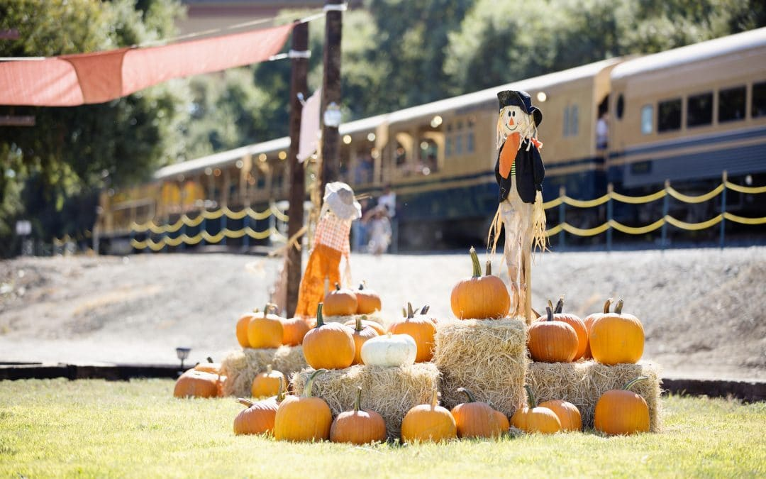 Enjoy These Socially Distanced Fall Activities near Roseville and Rohnert Park